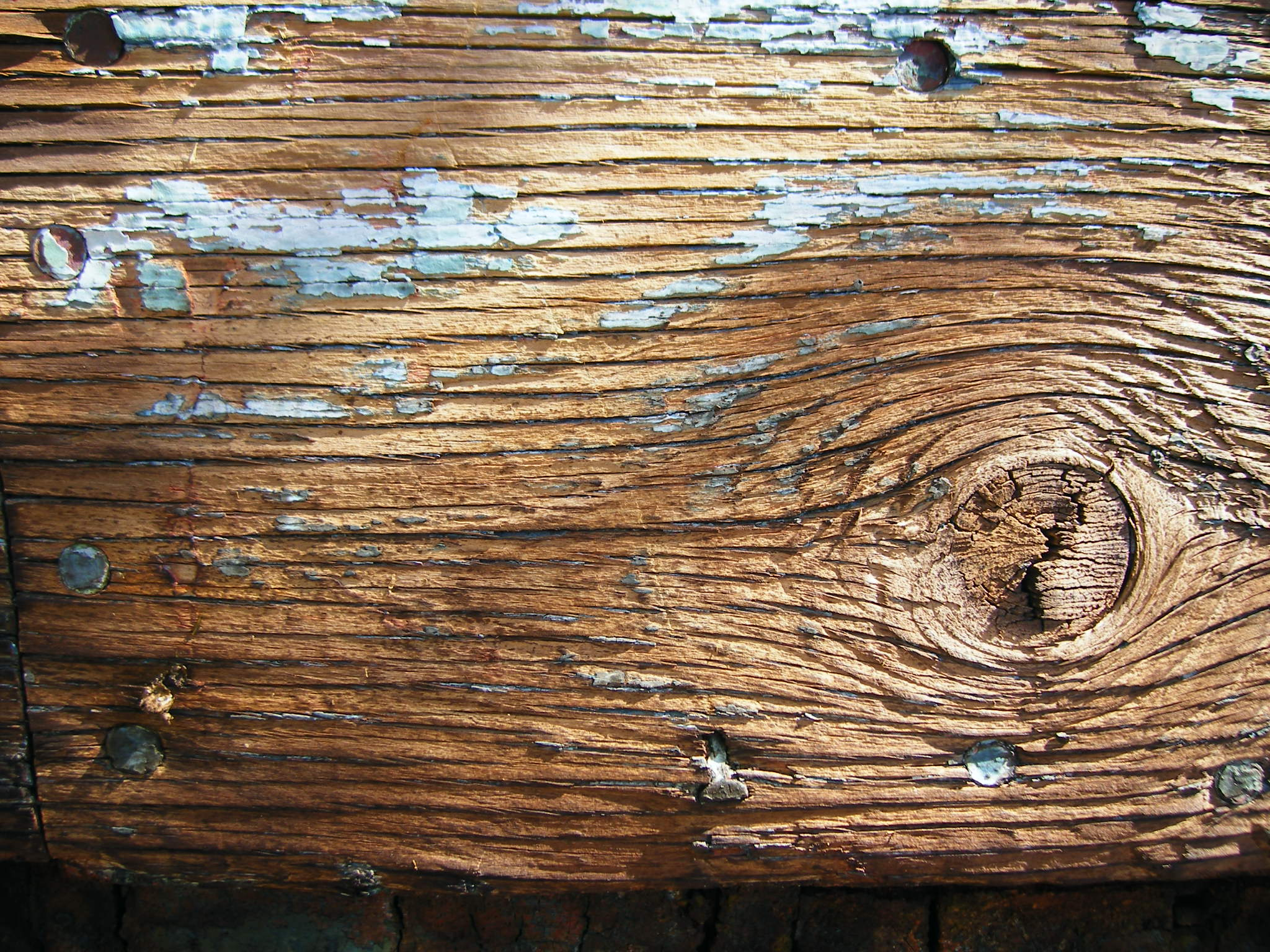 Wood-Grain-Photo 2.jpg