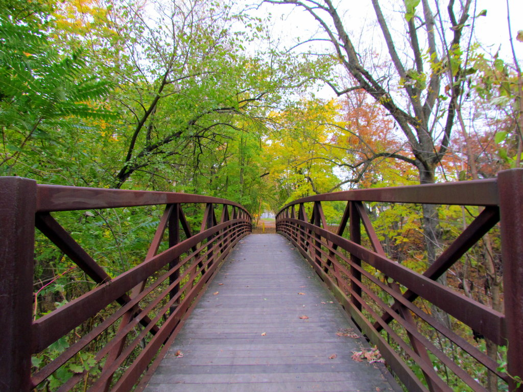 trail bridge 3.jpg