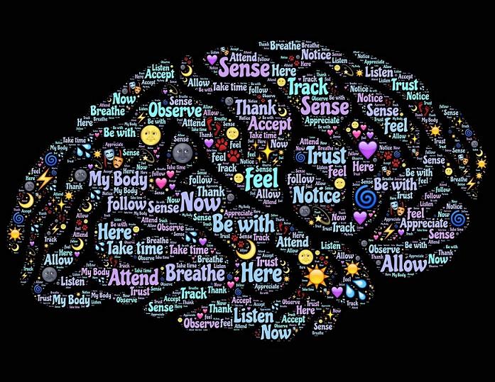 brain-mind awake reduced 3.jpg
