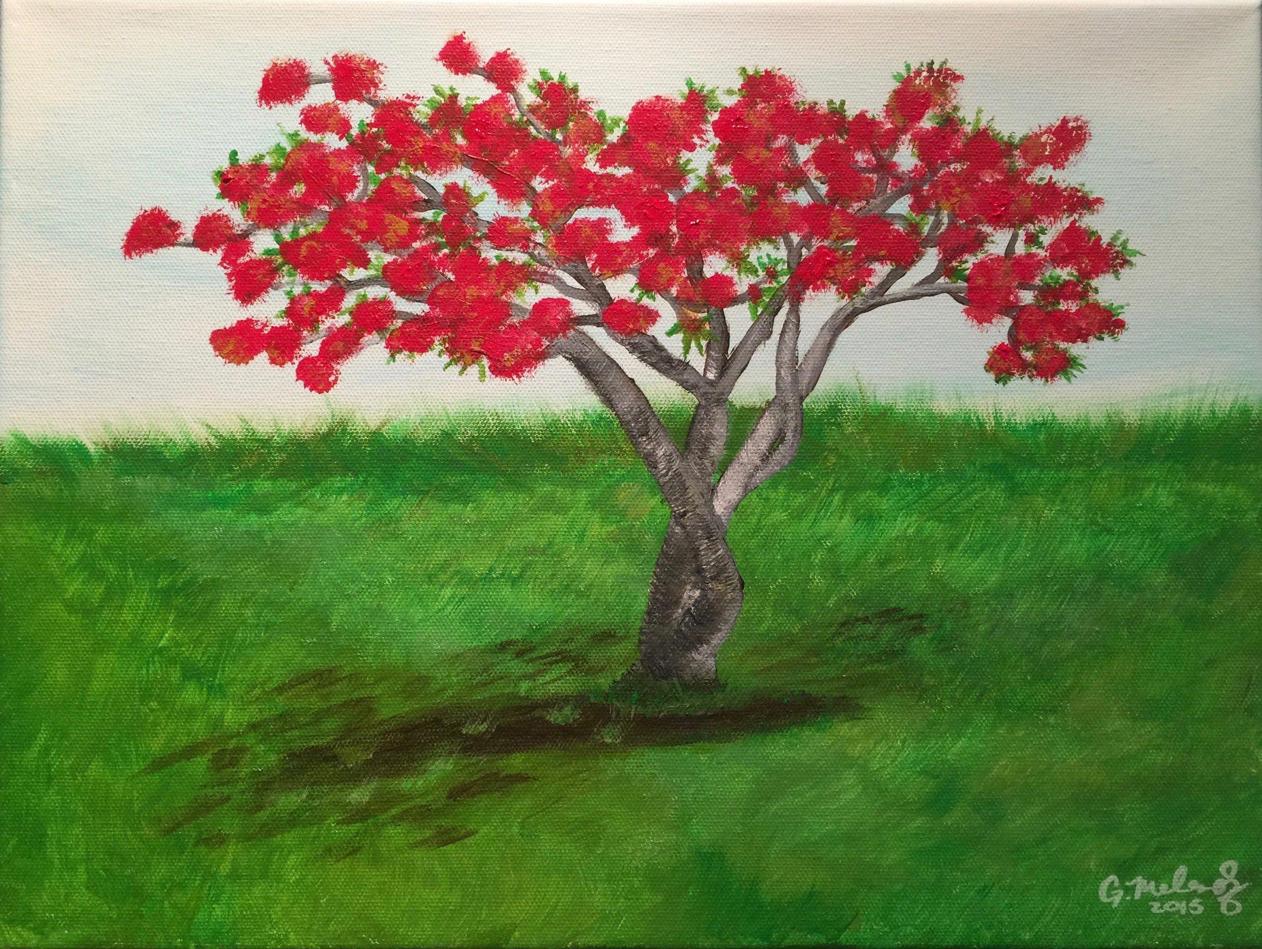 Flamboyant_Tree.jpg