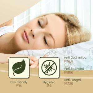 antifungal antibacterial antidustmite best ergonomic supportive contour pillow