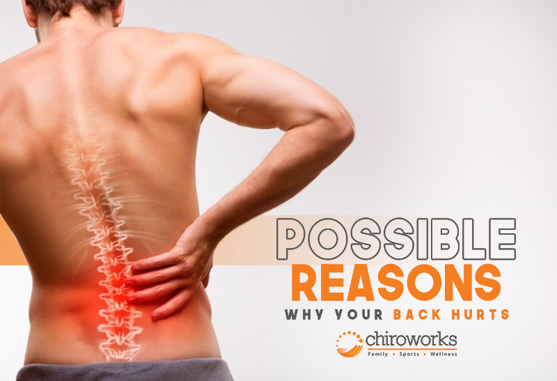 Possible Reasons Why Your Back Hurts.jpg