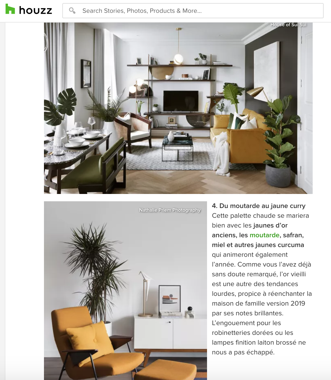 HOUZZ - HOUSE OF SUI SUI Maison & Objet Trends the 2019 Edition Tendances Melissa Bolivar 7.png