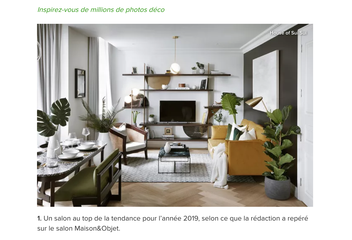 HOUZZ - HOUSE OF SUI SUI - MELISSA BOLIVAR.png