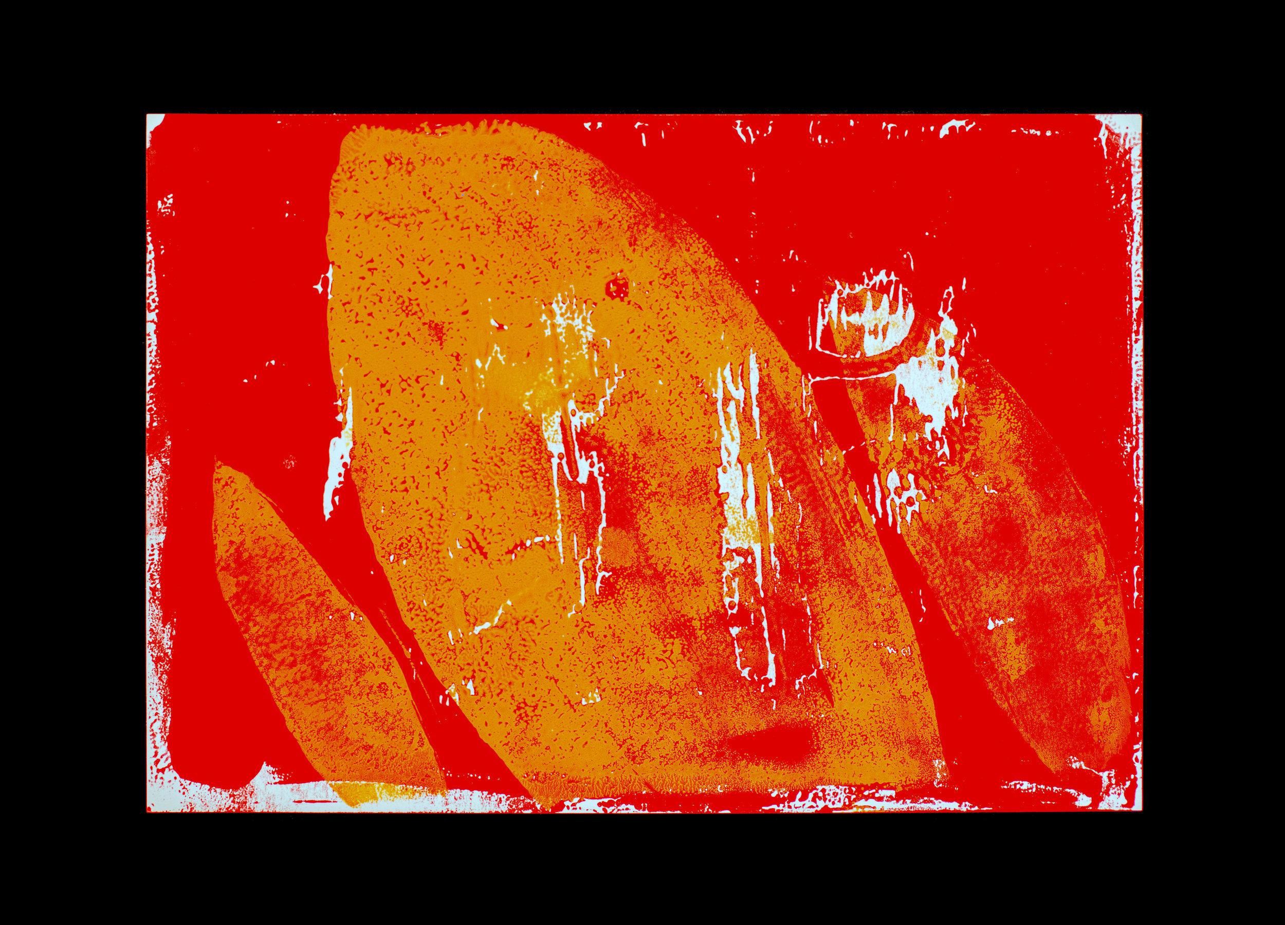 Marion_2 copie.jpg