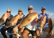 Grouper-Naples-Charter-Florida-Deep Sea-Fishing
