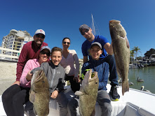 Gag Grouper-Fishing-Florida-Naples-Bonita Spring-Charter