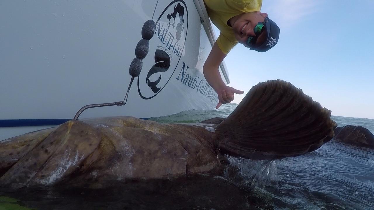 Goliath Grouper-Naples-Fishing Charter