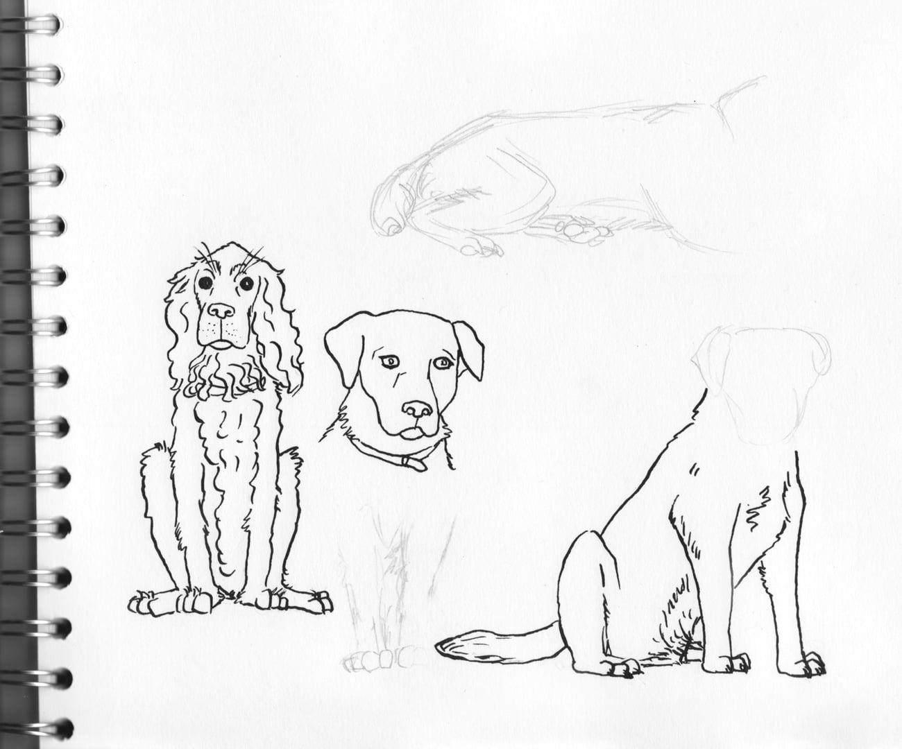 dogs-sketch-sm.jpg