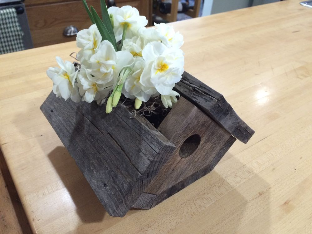 One of my favorite birdhouses repurposed as a flower vase on my kitchen butcher block island.