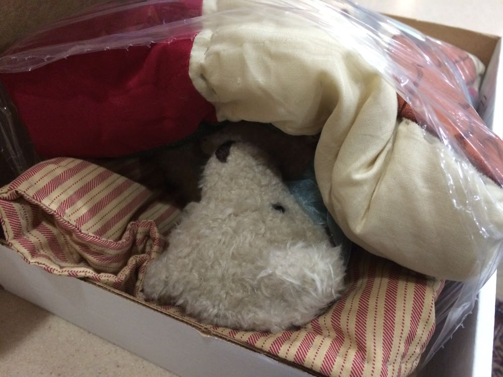 Gift bear is tucked in for a nap during his trip to meet his new baby boy.