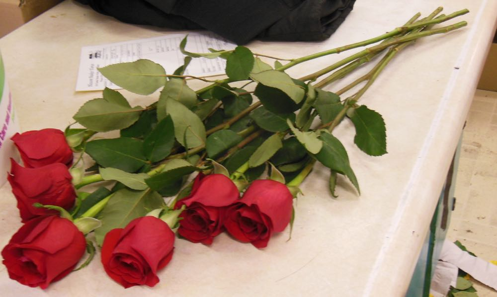Some gift red roses are delivered cut in boxes with stems in water in small water containers.