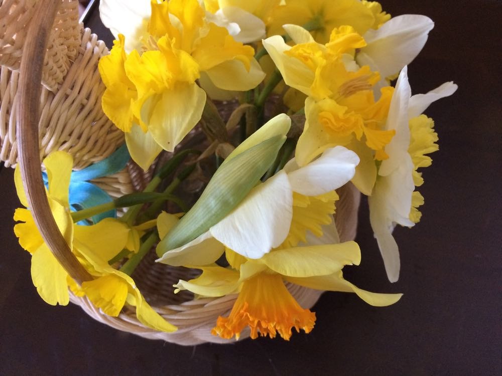 I enjoy a mixture of daffodils from my garden, or you can make a bouquet of the same flowers.