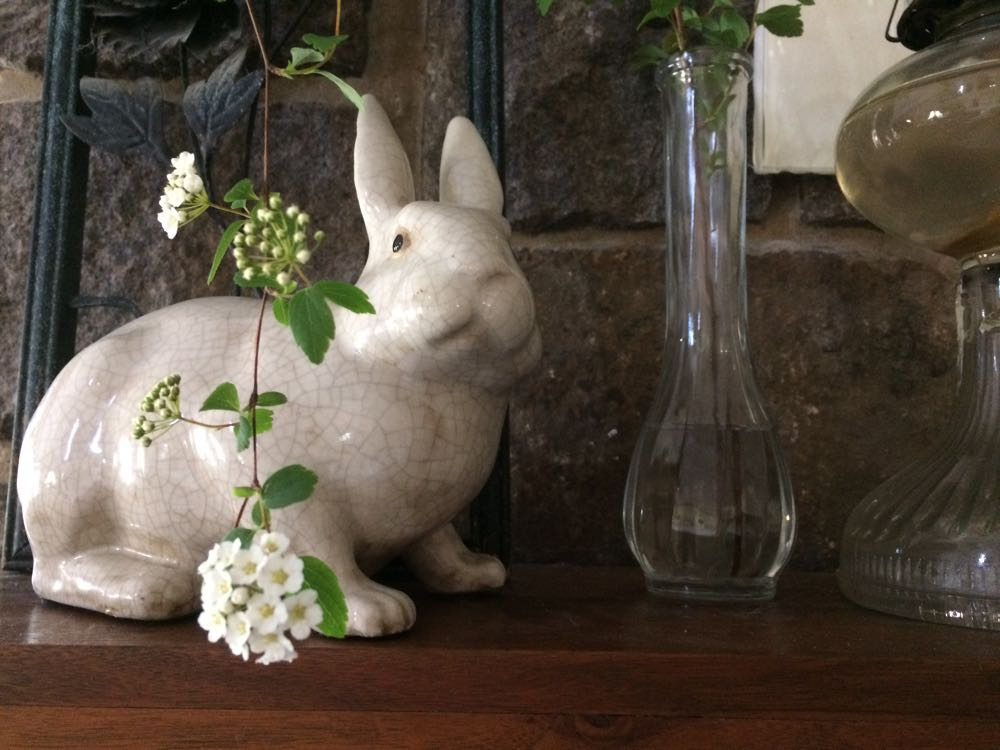 A cut branch from bridal veil bush in a vase on my mantle.
