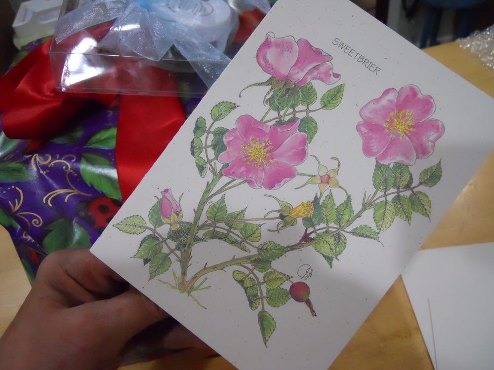 Mom's father's day gift included the prettiest handmade flower card in our collection.