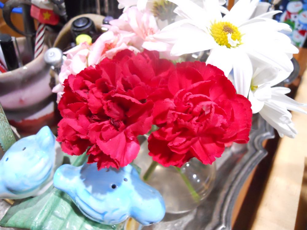 Red carnations from a gift bouquet keep a little sprig of pink geraniums company in kitchen vase.