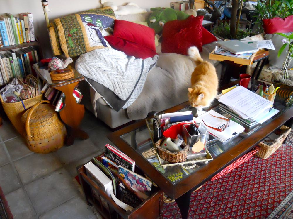 This is reading nook central, where I do most of my writing, research reading and cat petting.