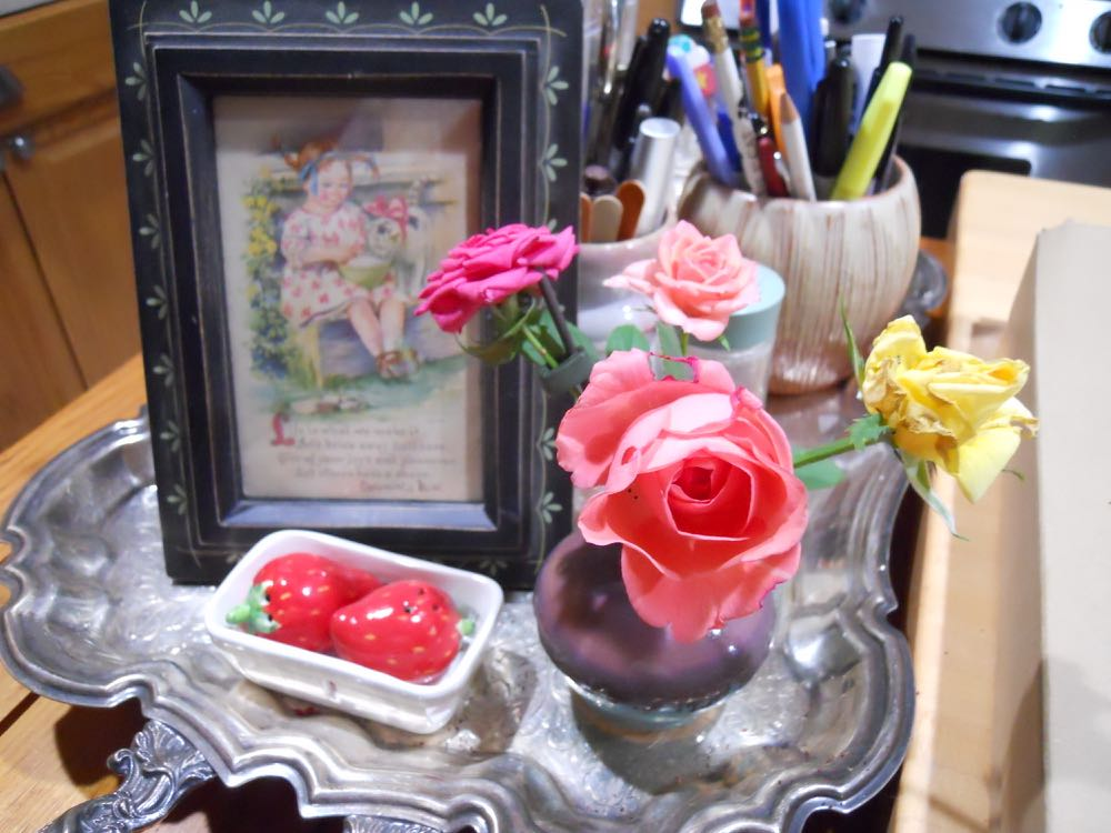 My little collection of homegrown roses welcoming kitchen visitors.