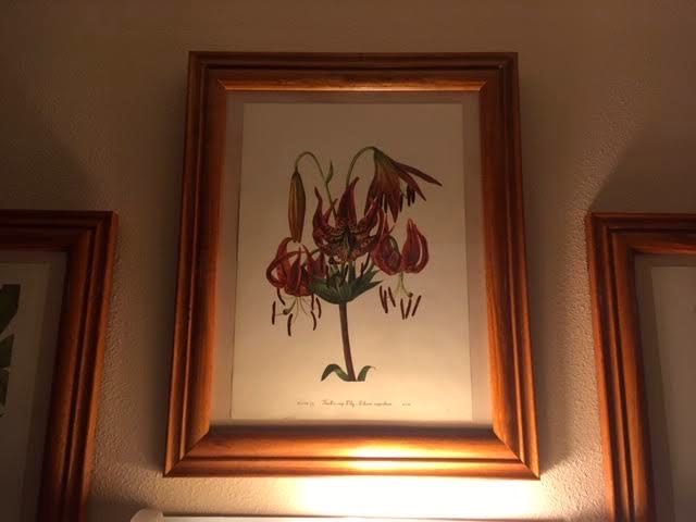 The wall sconce now highlights the tiger lily print. (Photo by Charlotte Ekker Wiggins)
