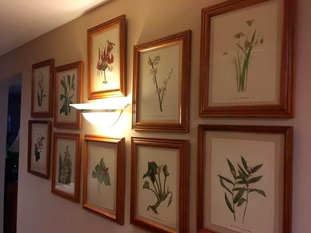 The ten flower prints in my basement hallway. (Photo by Charlotte Ekker Wiggins)