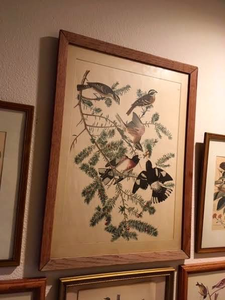 This first bird print started the collection. (Photo by Charlotte Ekker Wiggins)