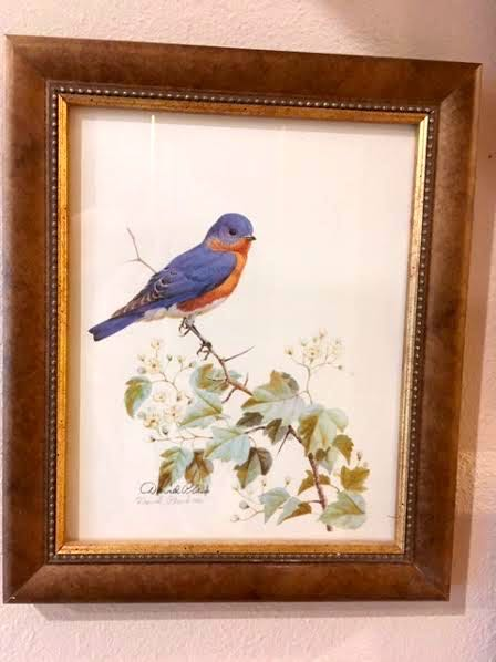 My Eastern Bluebird print signed by Missouri artist David Plank. (Photo by Charlotte Ekker Wiggins)