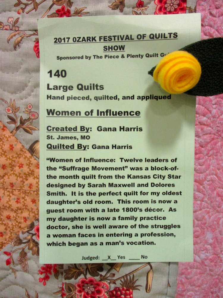 Each handmade quilt has a story and this is the story of Women of Substance Handmade Quilt, (Photo by Charlotte Ekker Wiggins)