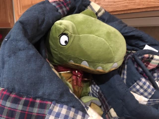 Dino is safely tucked in and ready for his trip to his new home. (Photo by Charlotte Ekker Wiggins)