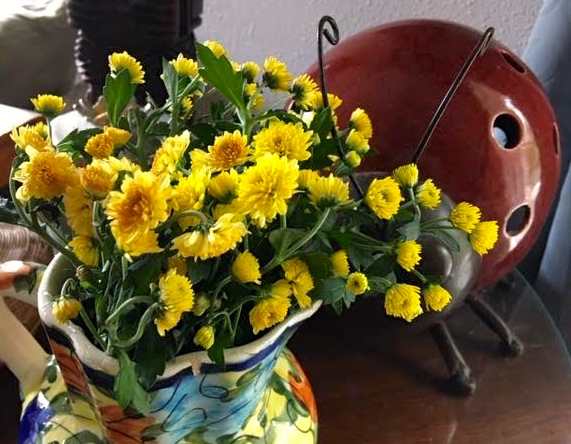 Yellow mums from my garden bring a hint of fall into my den. (Photo by Charlotte Ekker Wiggins)