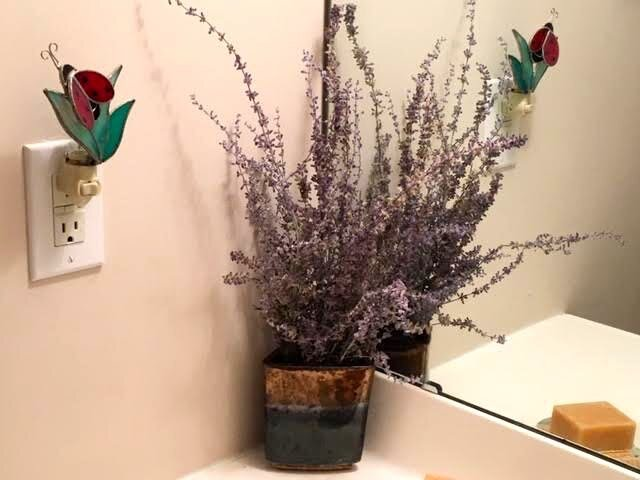 This sprig of dry Russian Sage now decorates a corner of a bathroom. (Photo by Charlotte Ekker Wiggins)