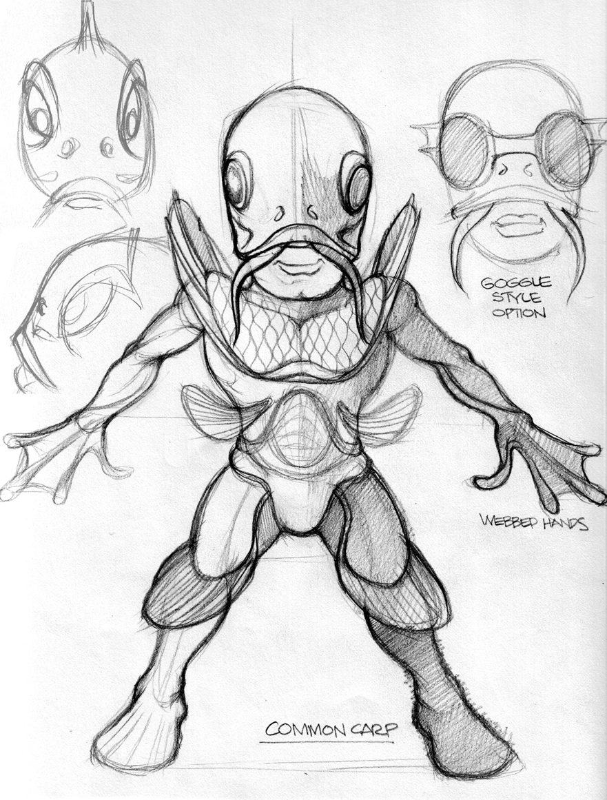 Common Carp Sketches