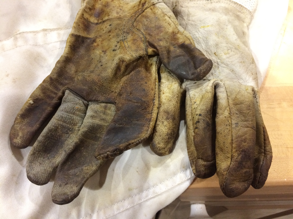 Leather gloves are important beekeeping safety equipment, these have been well worn.