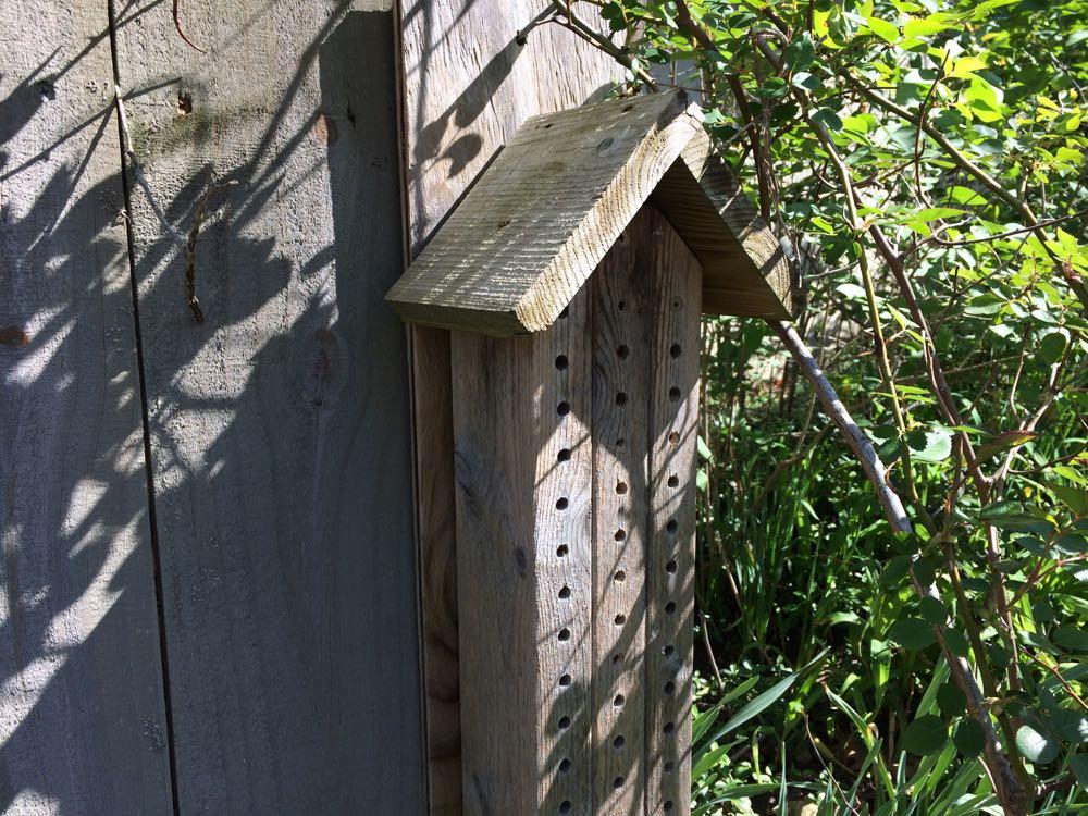 A colleague made me this mason bee house as a Christmas present.