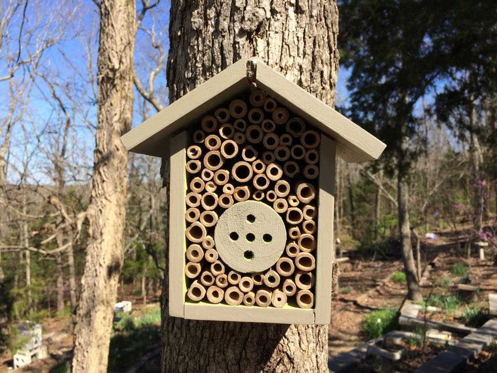 Another simple pollinator house from bamboo sticks hanging from a tree in my garden.