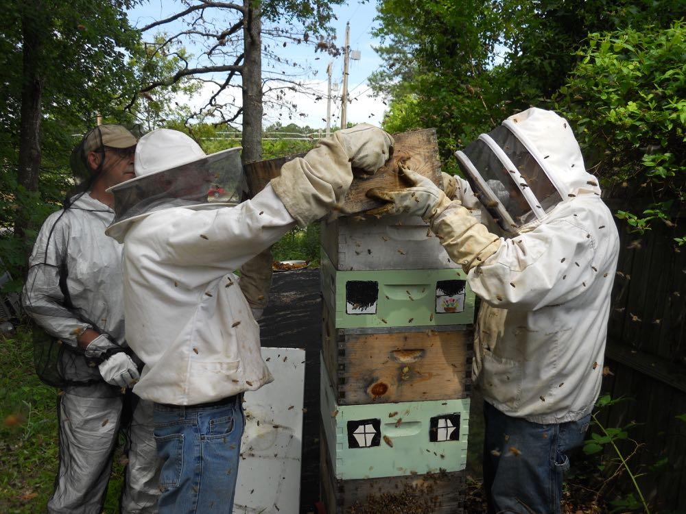Tom Miller helps David Draker lift hive boxes back on Kelly S. Bracken's now taller hive.