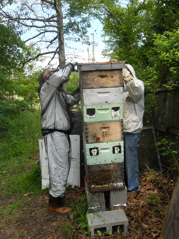 Kelly S. Bracken helps put the telescoping lid on the top of his hive.