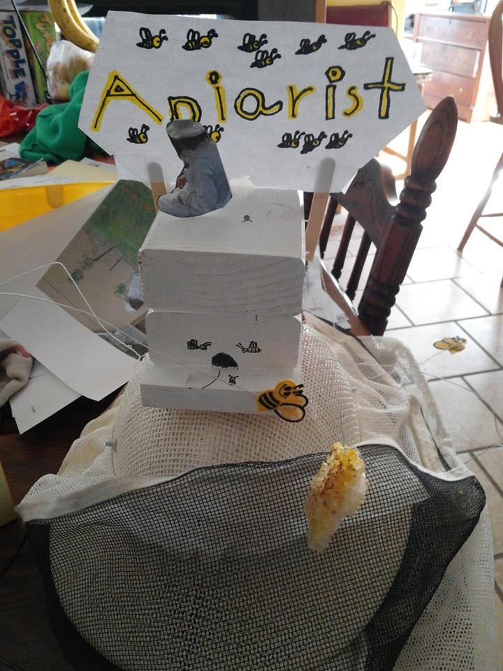 A friend's daughter made this display for her career day entry. Can you tell her Mom keeps bees??