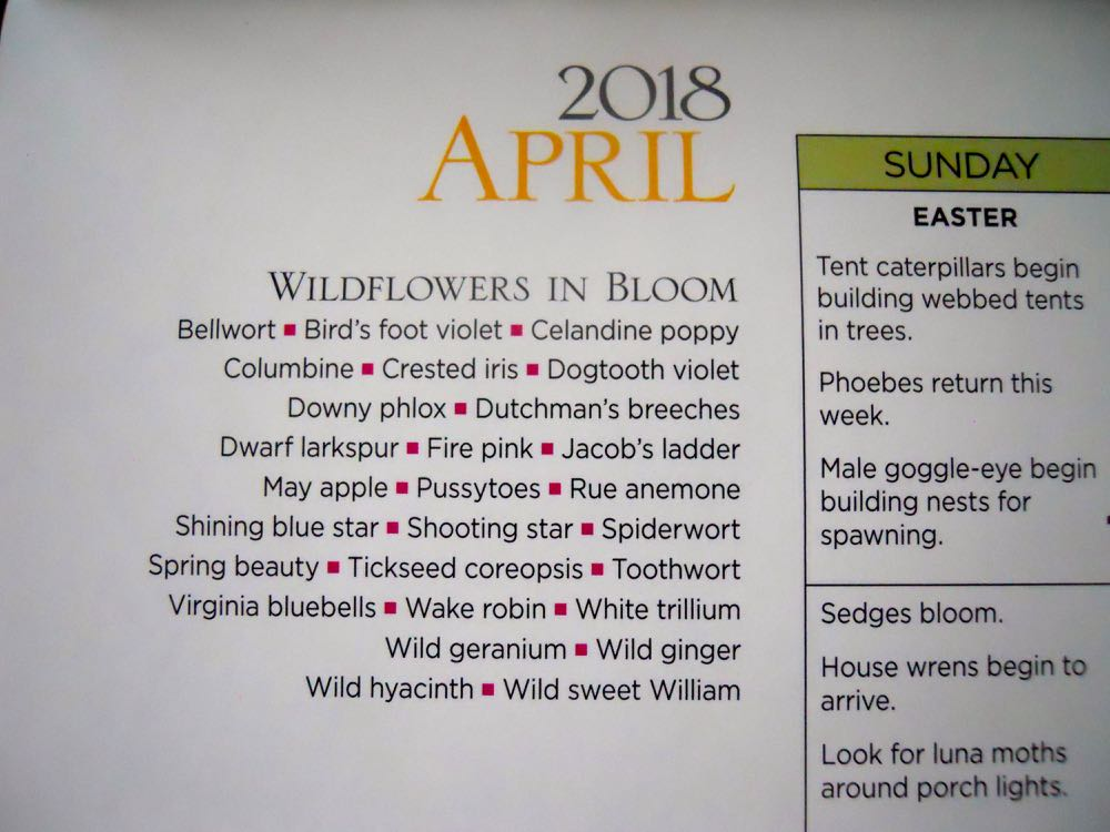 Missouri Department of Conservation's Natural Event calendar includes wildflowers in bloom.