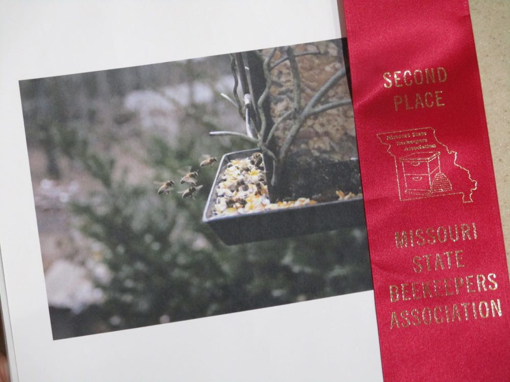 My photo of some honey bees flying into bird feeder won a second place ribbon at state contest.