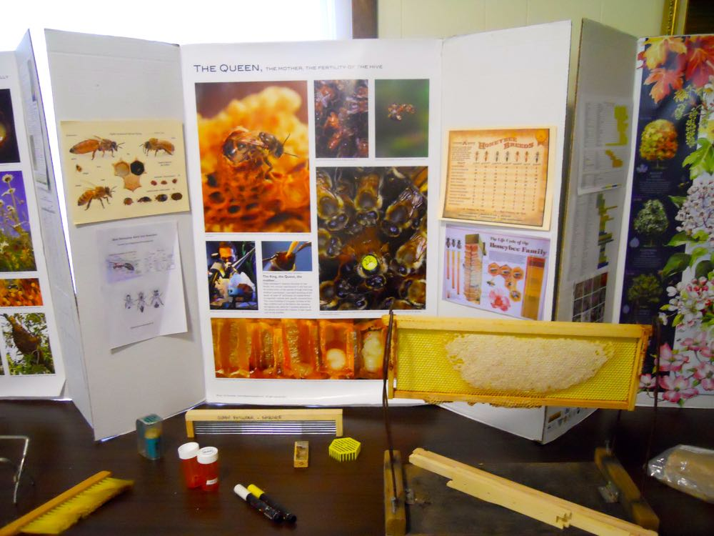 One of the new photo displays at our January 24, 2018 beginning beekeeping class.