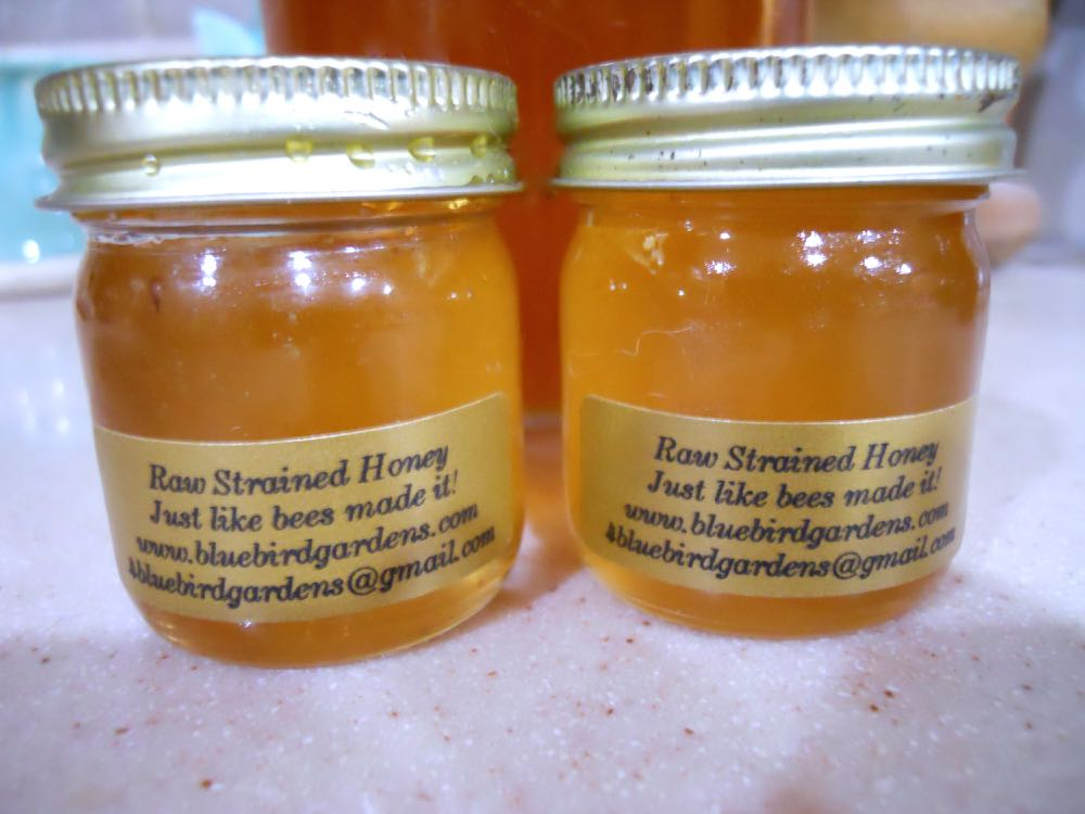 My little 2 oz. honey jars filled and labelled for re-use after a hot water bath.