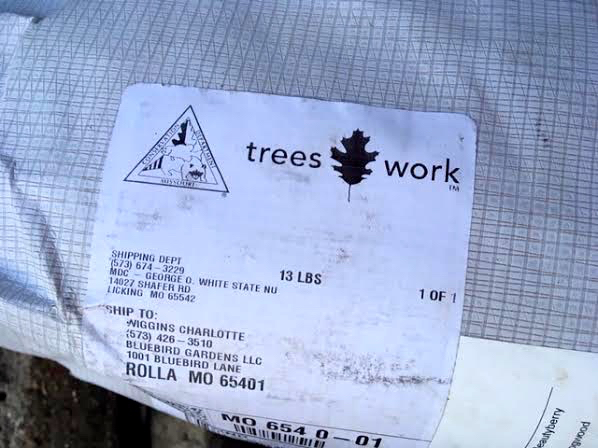 Shipping label from my George O. White State Nursery order. (Photo by Charlotte Ekker Wiggins)