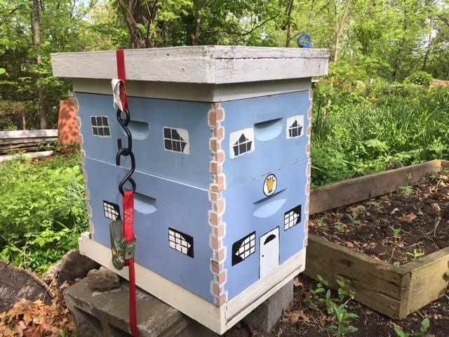 One of my honeybee hives building up the colony this spring. (Photo by Charlotte Ekker Wiggins)