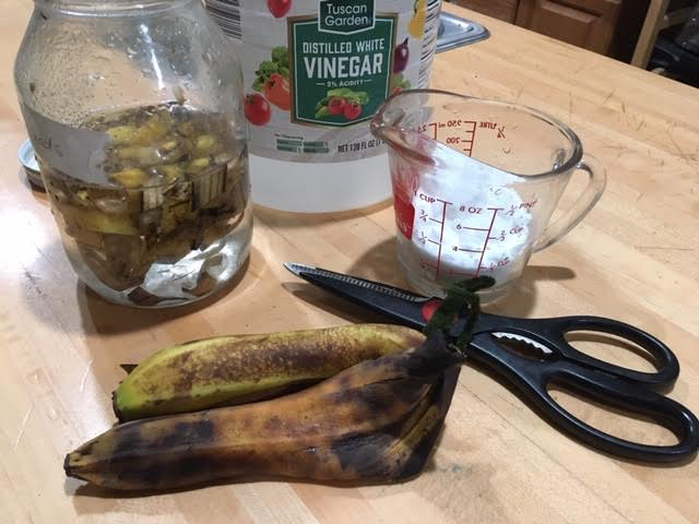 Ingredients for homemade small hive beetle lure. (Photo by Charlotte Ekker Wiggins)