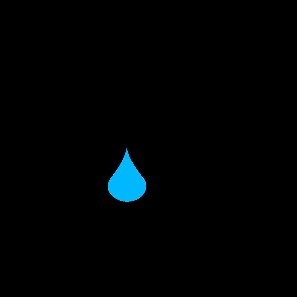 Community wash logo.png