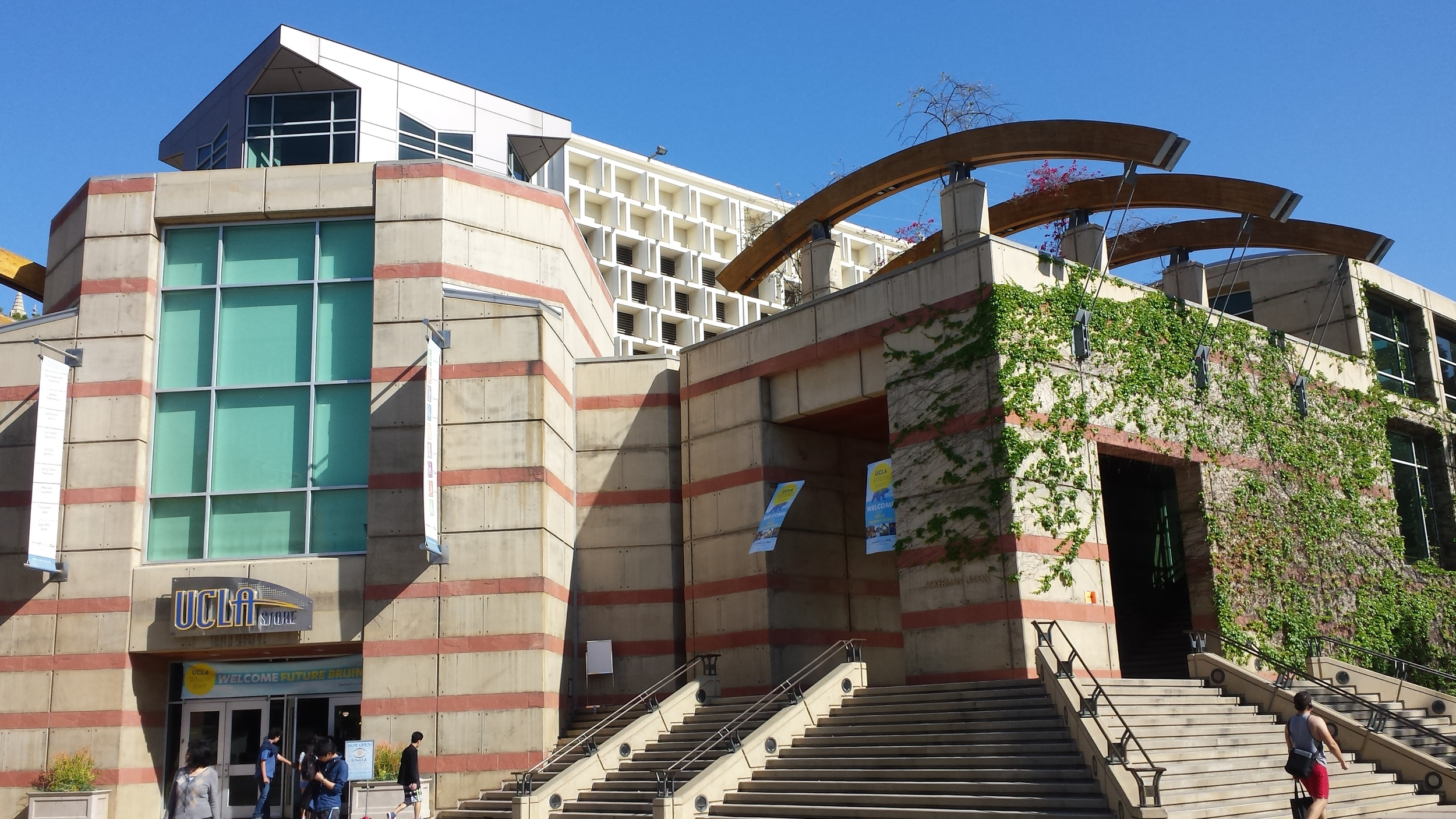 UCLA 2.jpg