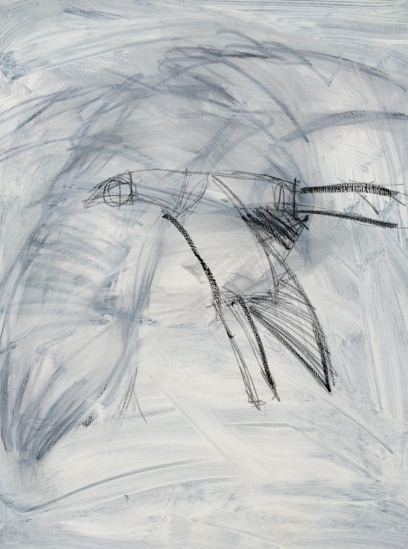 Messenger Crow #1