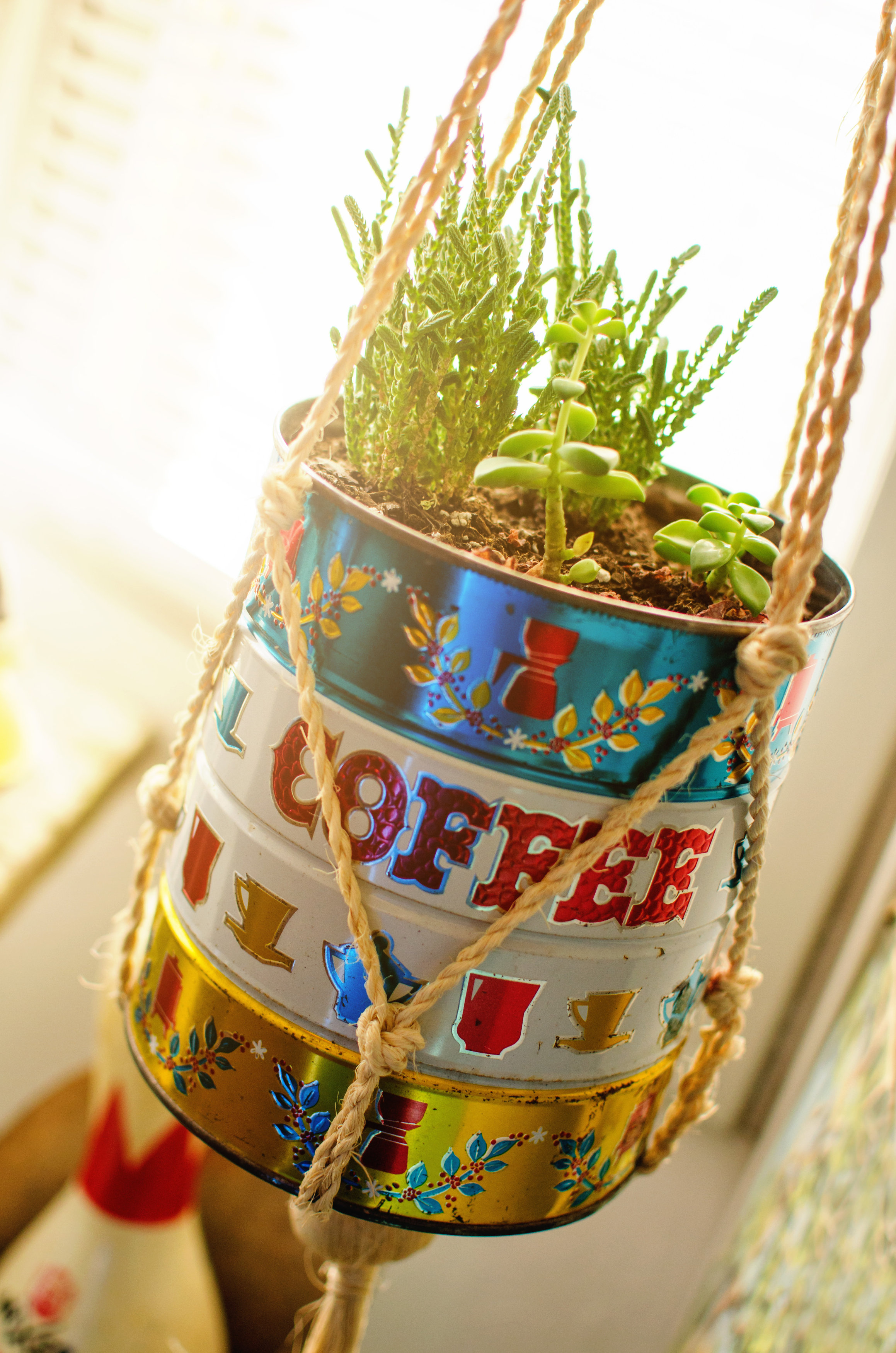 Vintage coffee can repurposed as a planter. H.Prall & Co. | hprallandco.com