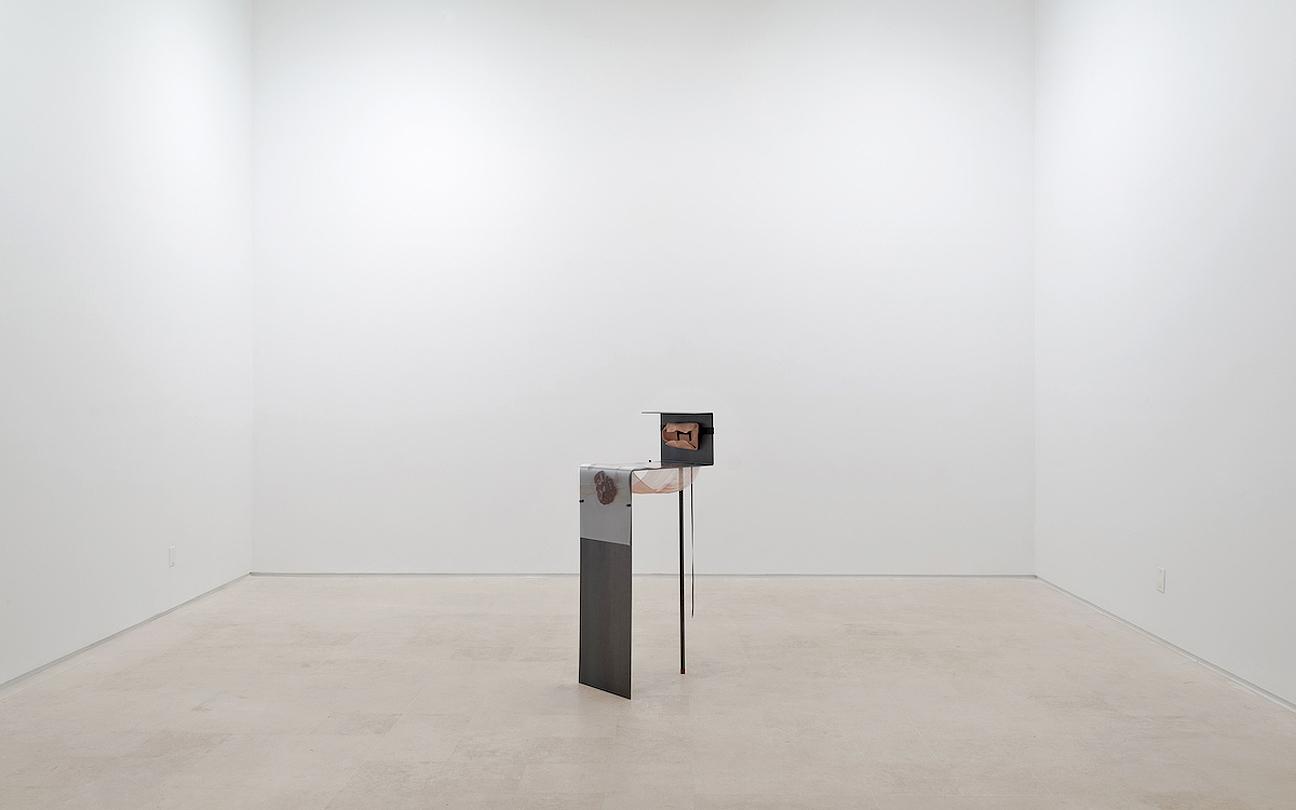 Alisa-Baremboym-Miguel-Abreu-Gallery-Porous-Solutions_1_2014.jpg