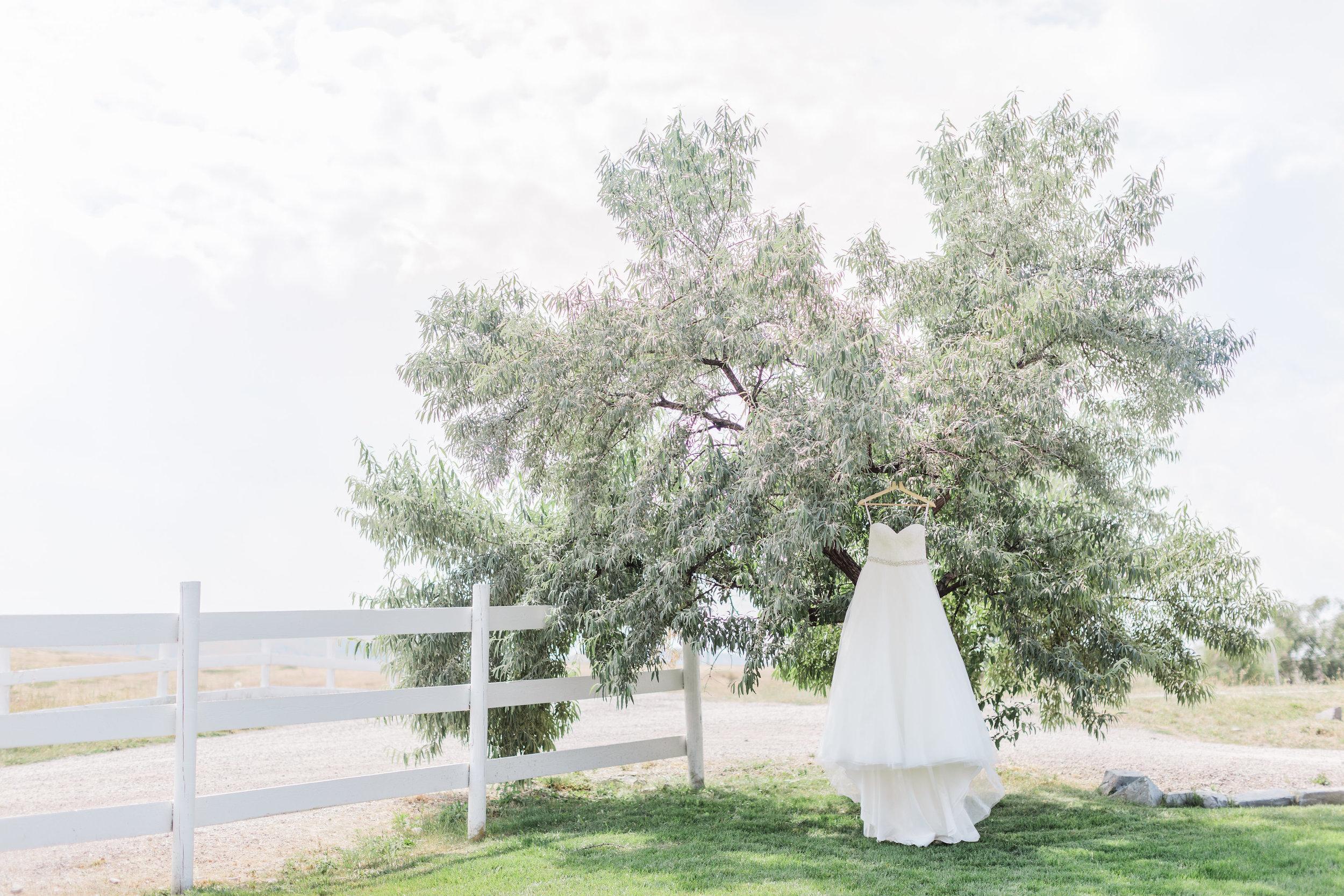 Summer Weddings at Rugged Horizon
